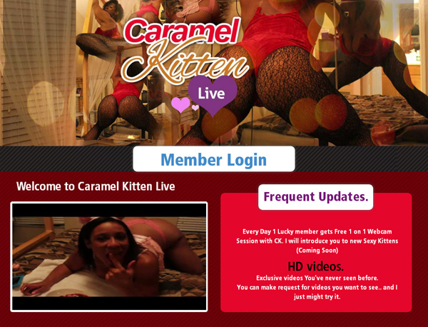 Account Caramel Kitten Live